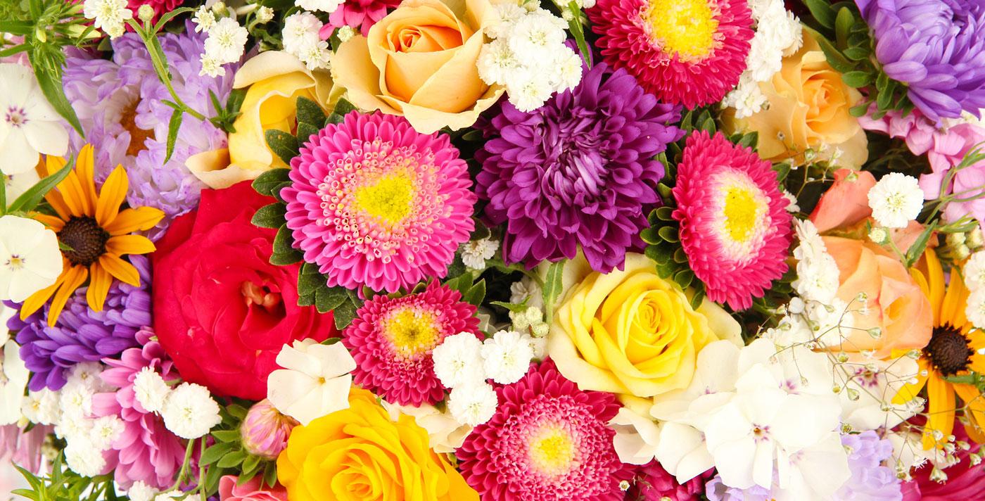 cinta florist
